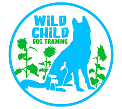 Wild Child Dog Training